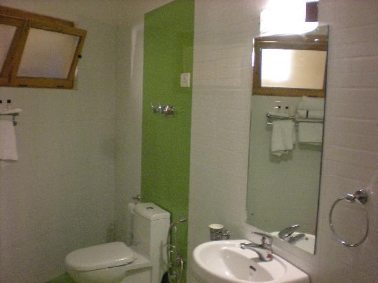 Ladakh Residency: bathroom