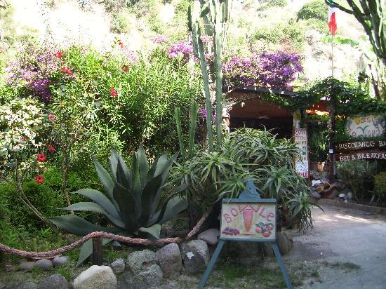 Oasi la Vigna B&B Restaurant: colourful place
