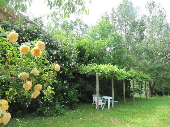 Locanda della Valle Nuova : Roses and Relaxation