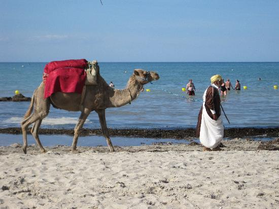 Iberostar Mehari Djerba : plage