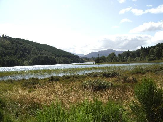 A Eilean A Cheo : How peaceful is this?