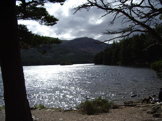 A Eilean A Cheo : Loch an Eilean