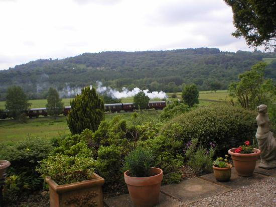 Holmefield Guesthouse: a view from the patio