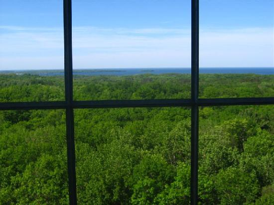 Mille Lacs Kathio State Park: View from observation tower