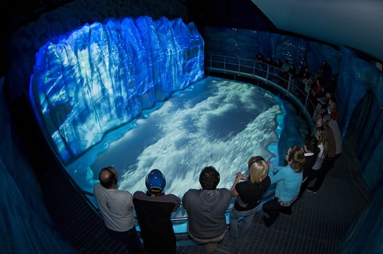 Baie Comeau, Canada: A world-class multimedia show