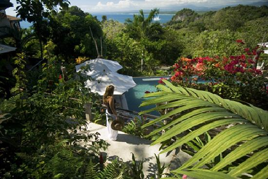 Tulemar Resort: Jungle View Overlooking Family Pool
