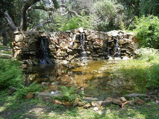 BlissWood Bed and Breakfast Ranch: Oasis water feature