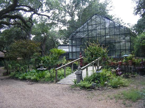 BlissWood Bed and Breakfast Ranch: Oasis greenhouse