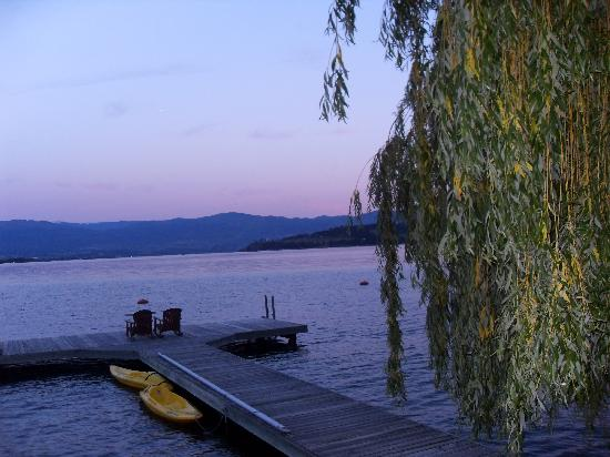 Willow Beach Bed and Breakfast: Lake view from the willow tree at sunst
