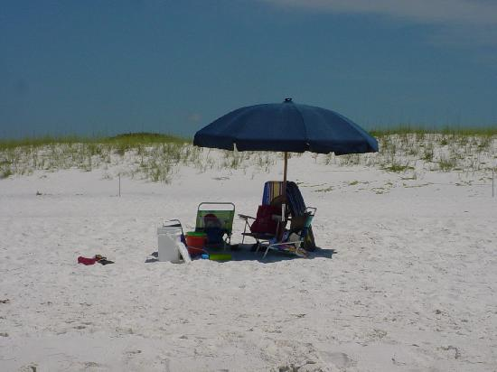 Gulf State Park Campground: Ft. Walton, FL