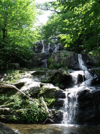Parc national de Shenandoah, Virginie : Dark Hollows Falls