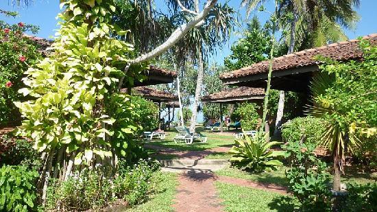 Sri Budhasa Ayurveda Resort: Garten mit Bungalows
