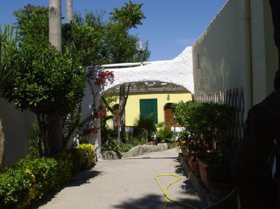 Hotel Villa Hibiscus : il Giardino