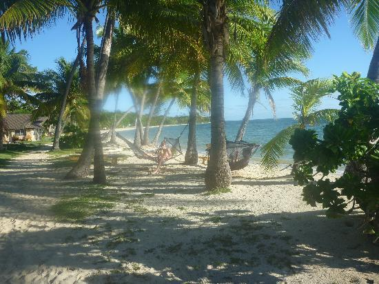 Plantation Island Resort: view up the beach