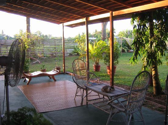 Treetops Lodge: Patio and BBQ area