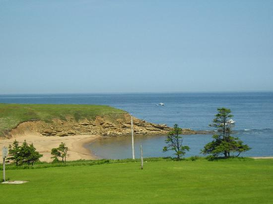 Whale Cove Summer Village: 15 acres for the kids, plus the ocean!