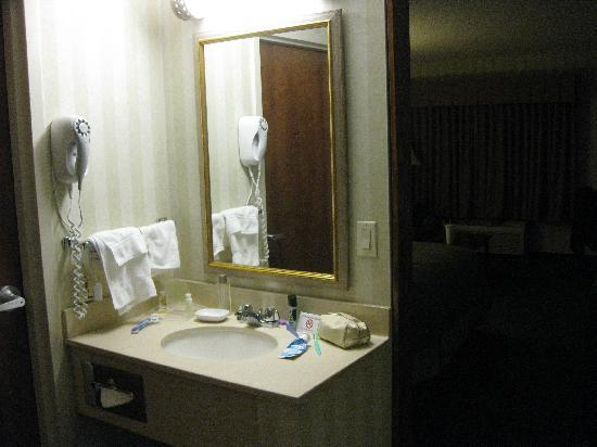 Holiday Inn Manchester Airport : Room