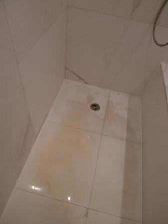 AG New World Manila Bay Hotel : brown murky water on the shower floor