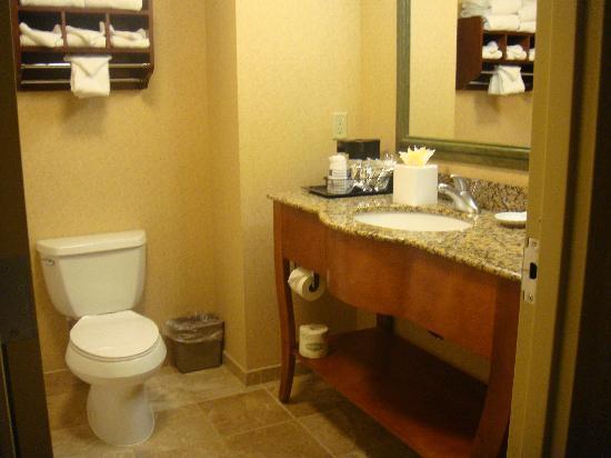 Hampton Inn & Suites By Hilton Williamsburg-Central : Bathroom