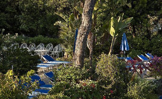 Grand Hotel Excelsior: garden