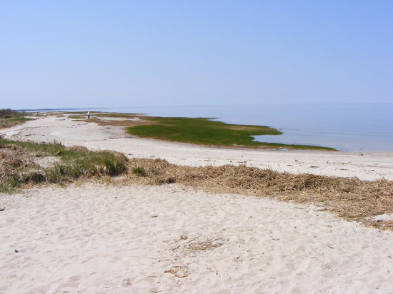 West Yarmouth, MA : area beach