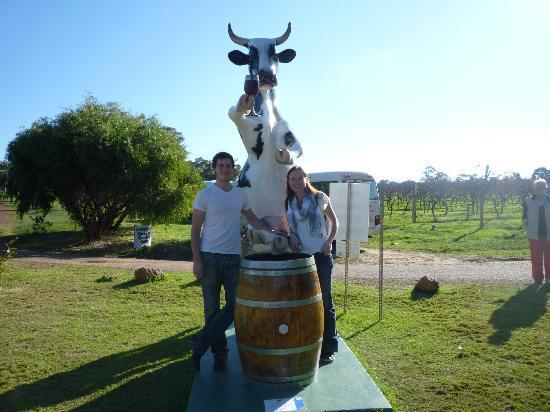 Bushtucker River & Wine Tours: plastic cow