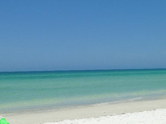 Bridgewalk Anna Maria Island Reviews
