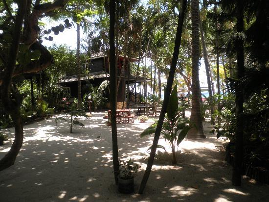 Bananarama Beach and Dive Resort: COURTYARD