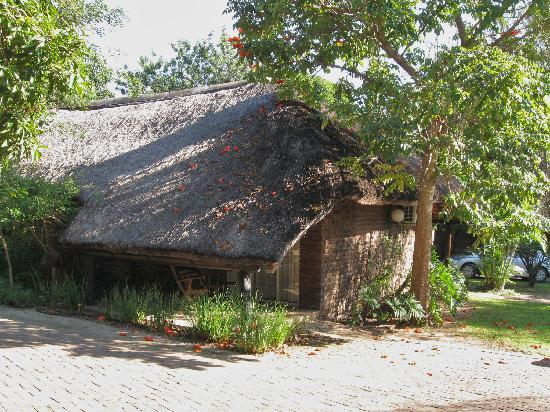 Tzaneen Country Lodge : our lodge