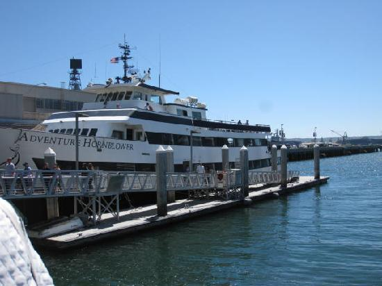 San Diego Picture Of Hornblower Cruises Amp Events San