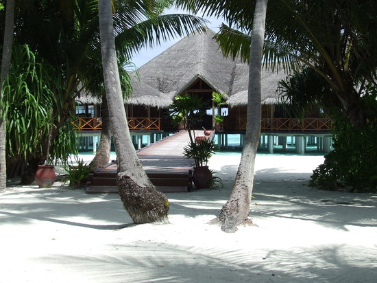 Medhufushi Island: View of the bar