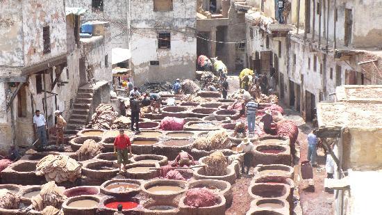 Fes, Maroko: Les Tanneries
