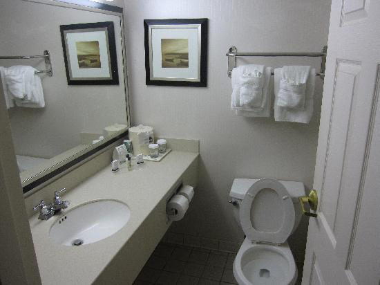 Wingate by Wyndham Mooresville: bathroom