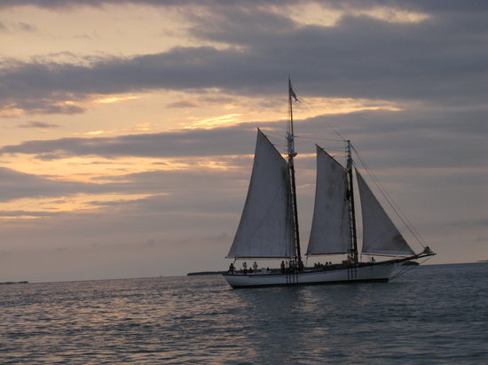 Catamaran Echo: Sail boat