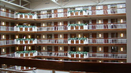 Embassy Suites by Hilton Dulles - North/Loudoun: Open Atrium