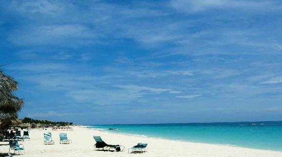 Palm Eagle Beach Aruba Perfect Blue Sky And Sandy White