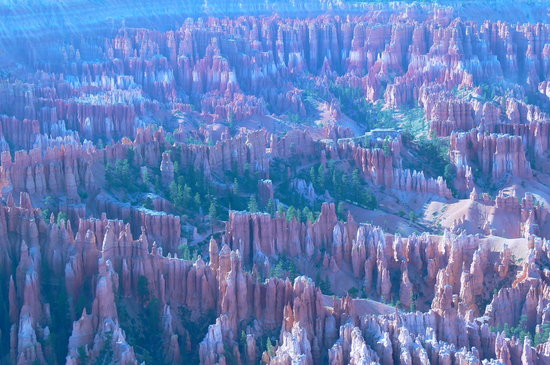Parque Nacional Bryce Canyon, UT: Land of Hoodoos
