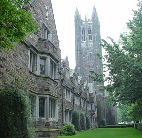 princeton is green