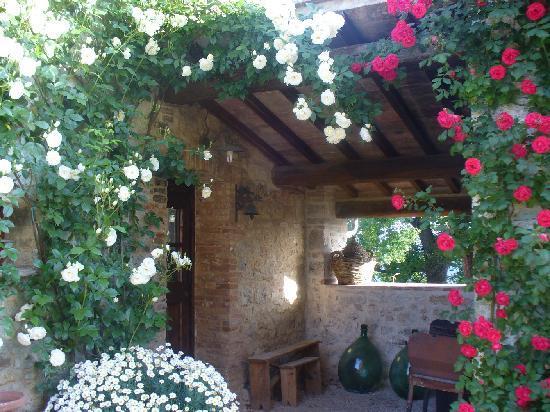 Fortezza de'Cortesi: a corner with view