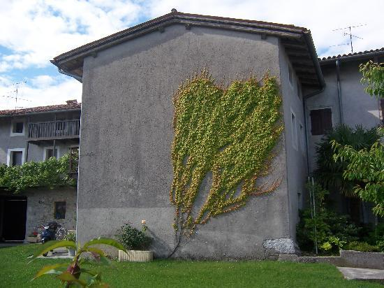 Cjase di Roc: ivy covered wall in the courtyard