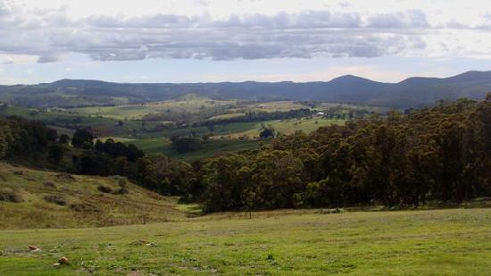 Melaleuca Mountain Chalets: View from cabin