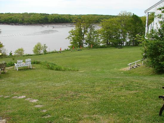Ledges By the Bay: Lawn area