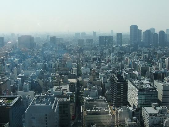 Shangri-La Hotel, Tokyo: Fantastic View from our Bay View Room