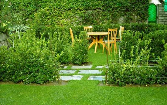 SilverBirch Manali Cottage: Lawn