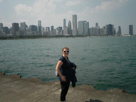 Fairfield Inn & Suites Chicago Midway Airport: Me and the skyline