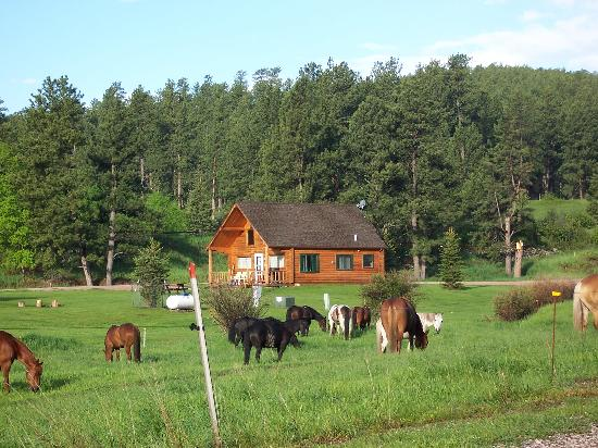 High Country Guest Ranch: Trailside cabin view #2