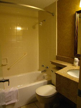 Days Inn Duluth/By Miller Hill Mall: Room 135 Compact Bathroom