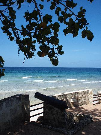 Hilton Barbados Resort: The cannon ruin / garden