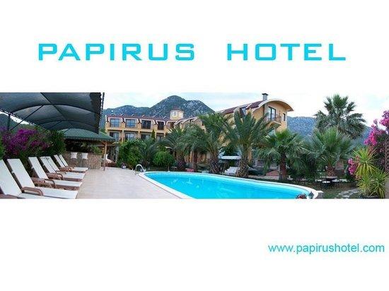 아드라산 파피루스 호텔