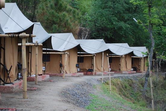 Camp Chrysalid Junga